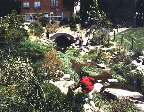 Children playing by Strawberry Creek